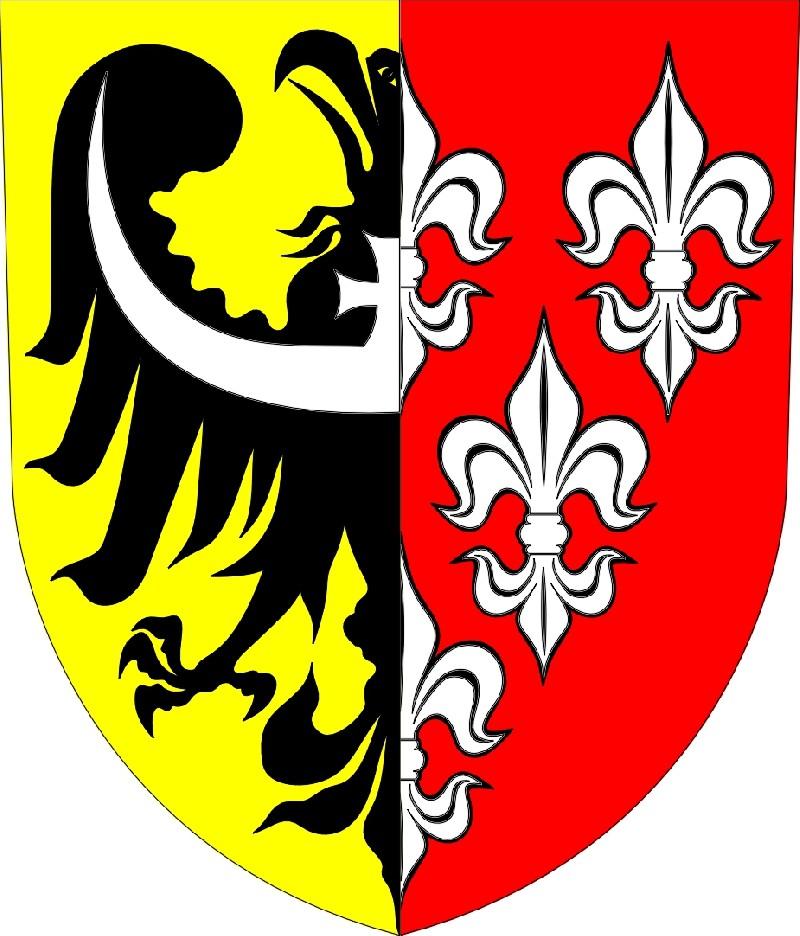 Powiat Nyski